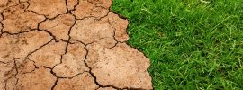 How climate change can affect soil conditions